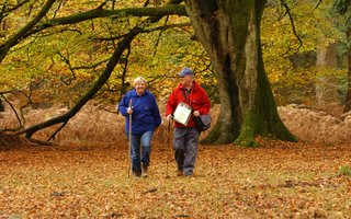Older couple walking in the woods in autumn