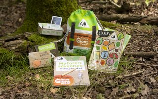 Contents of the my forest adventure kit on the forest floor