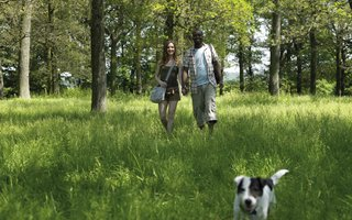 Couple with dog walking towards the camera in a forest