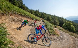 Mountainbikers at Whinlatter