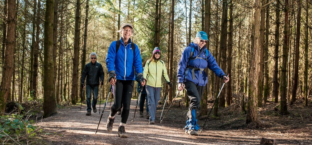 People enjoying Nordic Walking in the forest