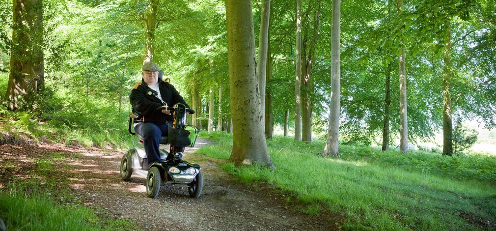 Easy access paths through the wood with man on tramper