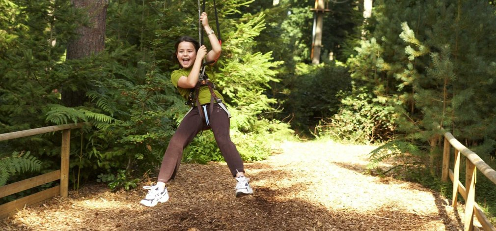 Moors Valley Country Park and Forest | Forestry Commission England