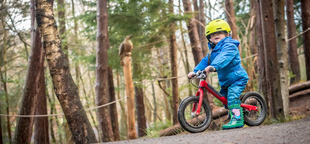 Child on balance bike in Hamsterley Forest