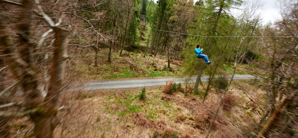 Go ape zip trekking adventure Grizedale