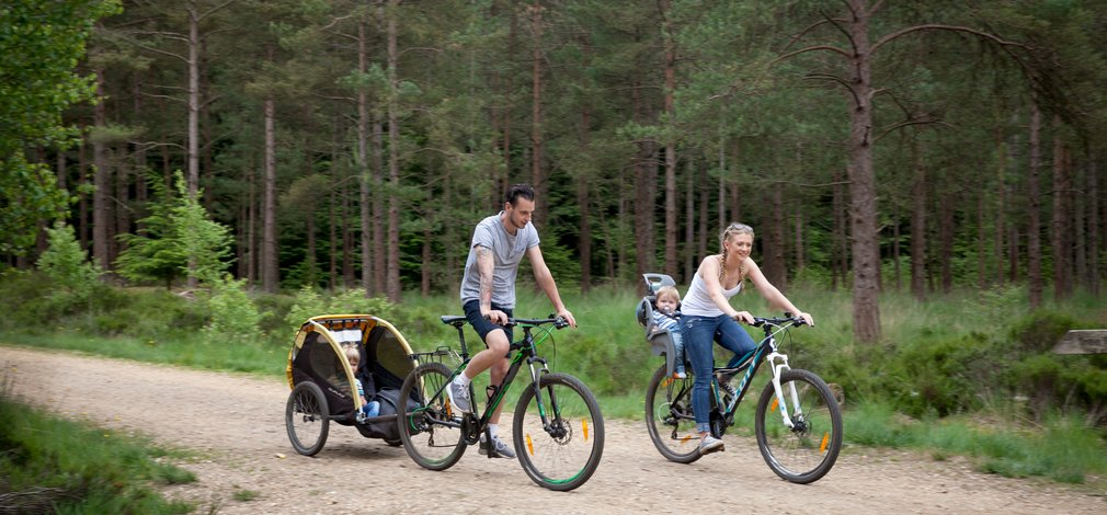 Family cycling at Moors Valley