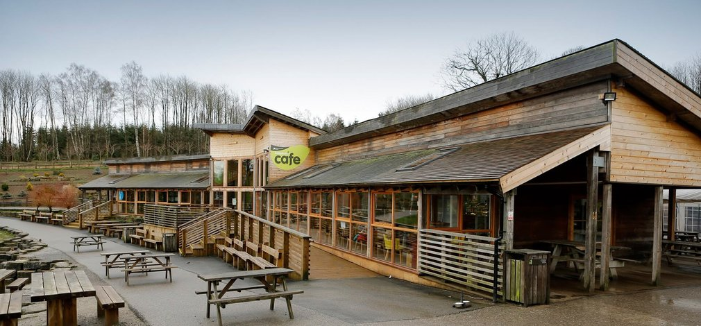 Cafe at Bedgebury
