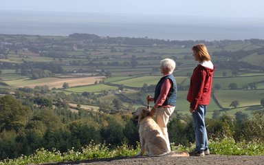 Walkers with their dog enjoying the view from top of hill