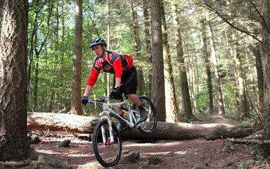 Individual mountain biking over rocks in the forest