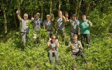 Group volunteering in the forest clearing woodland