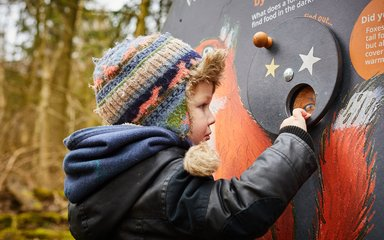Child on Gruffalo Spotters trail