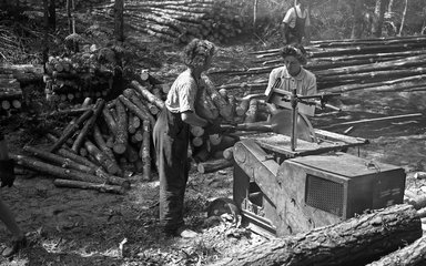 Lumber Jills operating portable 'liner' saw at Rendlesham Forest, Suffolk, July 1945