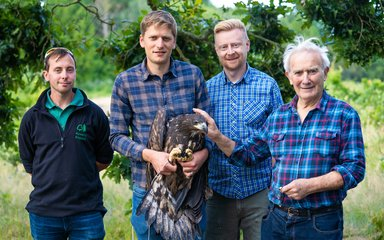 White-tailed eagle project team photo while holding a juvenile bird ready for release