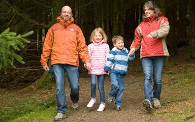 family walking at Whinlatter forest