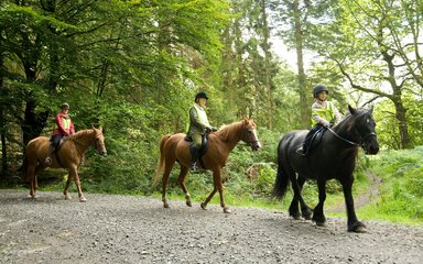 Horse riding on gravel tracks