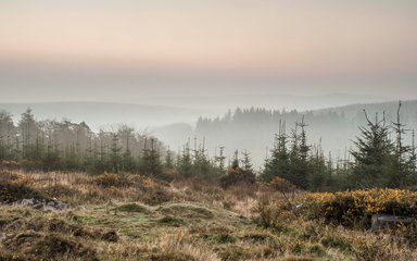 View across Dartmoor