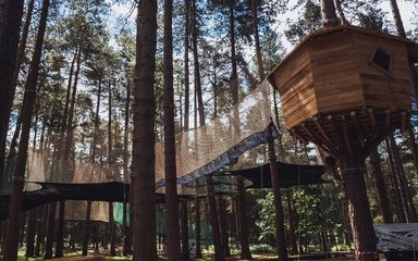 Go Ape's bouncy nets and trampolines in the trees