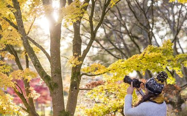 Woman with camera taking photo in autumn