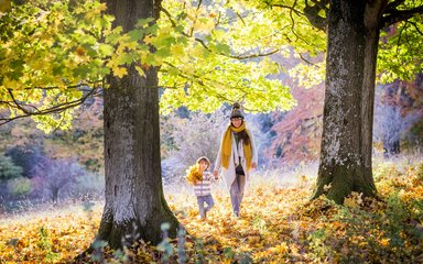Family on walk through autumn woods