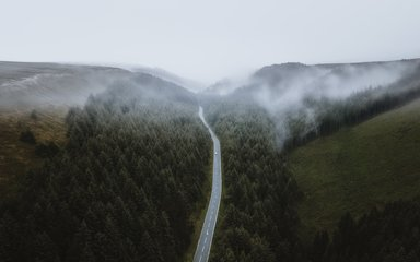 A road passing through Snake Woodlands on a misty day