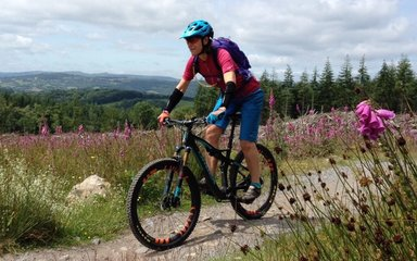 mountain biker enjoying nature