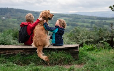 A boy and a girl sitting on a bench with a golden retriever