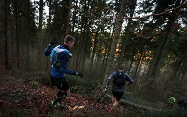 Runners on downhill slope off path in the forest