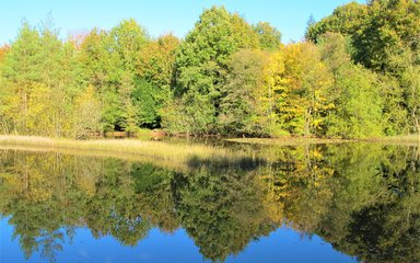 Dymock lake in autumn