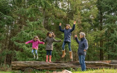 Children jumping off a tree trunk in the forest