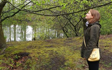 Woman looking up at trees by lake