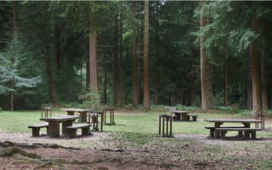 Empty picnic tables and barbecue stands