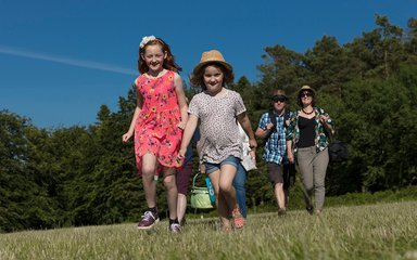 Family walking with picnic in sunny field