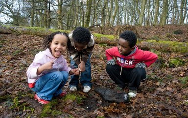 Children looking at forest floor