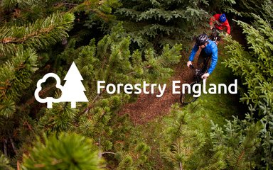 Forestry England logo over moutain bikers, shown from above