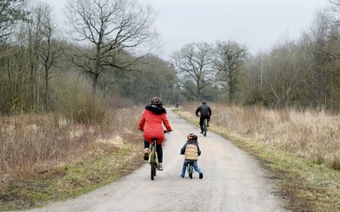 Family on bike ride on forest path