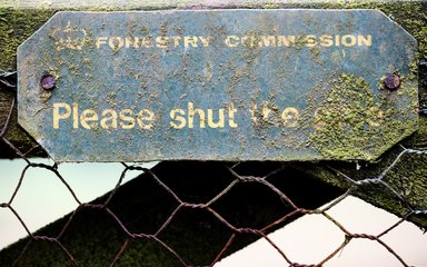 Mossy Forestry Commission sign through metal fencing