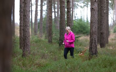 Dilly running in Haldon Forest