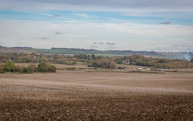 View of fields at Pleasant Farm soon to become new woodland