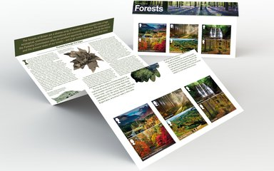 Royal Mail Forests stamps collection - presentation pack