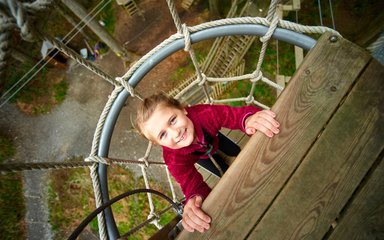 Go ape tree top junior Grizedale