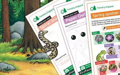 Gruffalo Spotters activity sheets