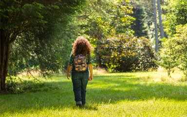 Woman walking on sunny day surrounded by the bright green forest
