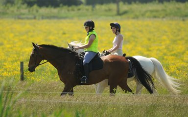 Ladies riding on Horses through the fields