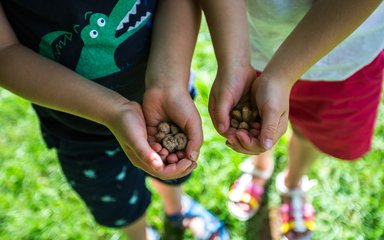 Children holding acorns