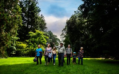 Westonbirt group