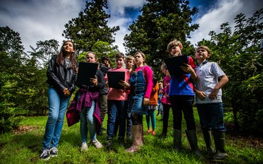Learning Westonbirt