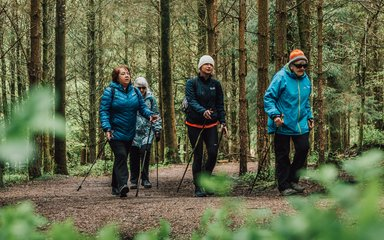 Group of women nordic walking in the forest