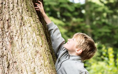 child reaching at tree