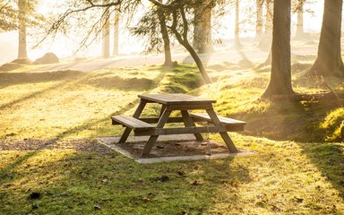 Picnic table at sunrise