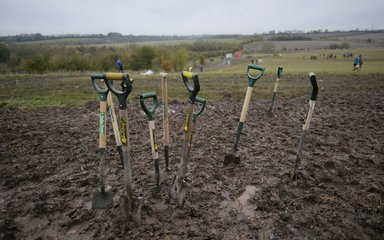 Group of large spades placed in mud at woodland creation project